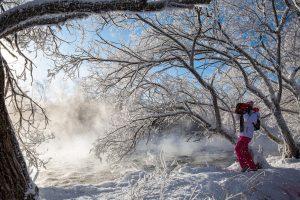 图片[4]-北国风光–雾凇景观–中国逊克-金瓦刀