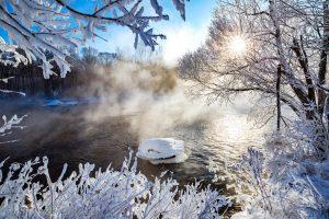 图片[2]-北国风光–雾凇景观–中国逊克-金瓦刀