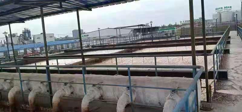 图片[11]-某公司废水处理四期工程生化池结构设计实战案例PKPM水池、有限元水池-金瓦刀